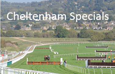 Cheltenham Specials (photo by Meteorshoweryn)