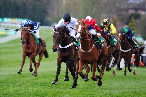 Sire De Grugy winning at Sandown last season (photo by meteorshoweryn)
