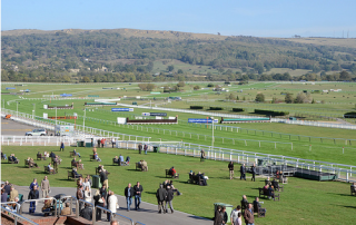 View from the stands at Cheltenham
