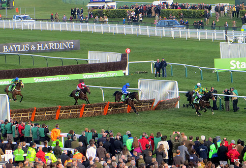 Jezki on his way to Champion Hurdle victory (photo by Kate)